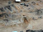 Carro excavado el día 13