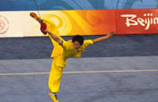 Wushu battles for place at Olympics