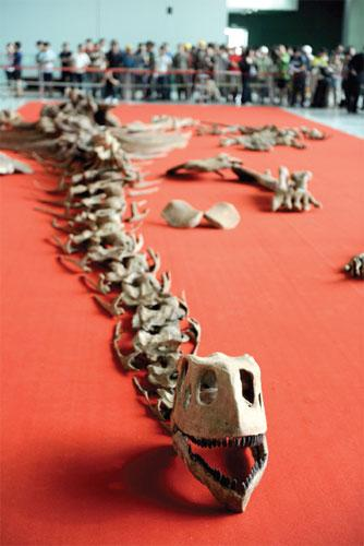 dinosaurfossils