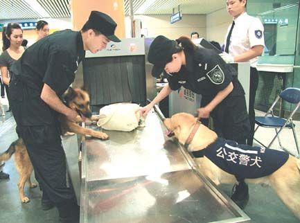 Beijing : les contrôles de sécurité se déroulent bien