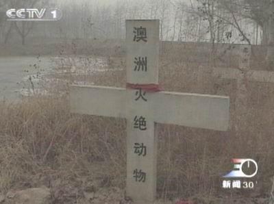 北京:世界灭绝动物墓地