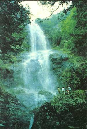 广西三百山国家森林公园 山青水秀