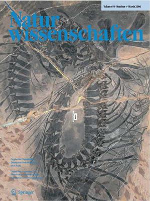 海生爬行动物化石