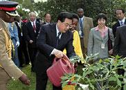 胡锦涛在联合国人居署和环境署总部植树留念