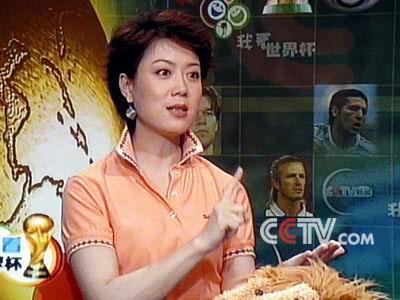 央视女主播李文静