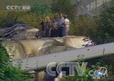 加拿大多伦多机场事故飞机黑匣子被找到图片