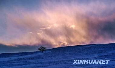 The vast grassland of Hulun Buir, in north China's Inner Mongolia Autonomous Region, is still blanketed with snow in March, the spring time when flowers are vying to bloom in southern parts of China. The silver snow has turned the place into a fairyland and attracted numerous tourists and photographers. [Photo: Xinhuanet]