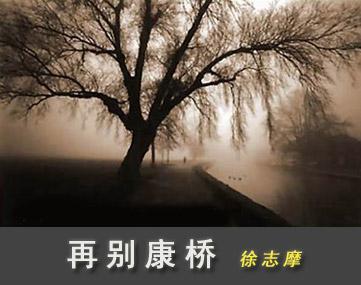 再别康桥 - zheng.wen38 - 正文的博客