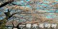 推荐日志 - 798DIY - 798DIY家饰 陶瓷家饰