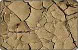 09/03/04 Voices and Votes: Drought fuels water scarcity