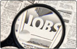 <b>Employment Crisis </b>