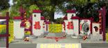 《聚焦三农》五一特别节目: 我们的新农村――走进�咧�<br></b>
