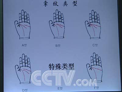 正常手掌图片肝掌跟正常手掌图片手掌图片